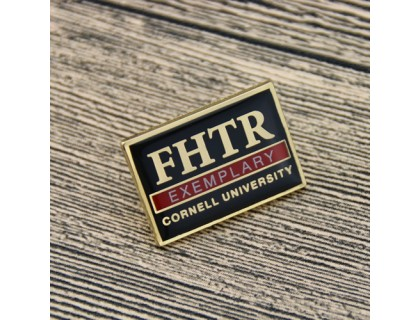 FHTR Exemplary Custom Pins